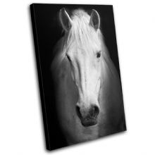 Horse Black White Animals - 13-0336(00B)-SG32-PO